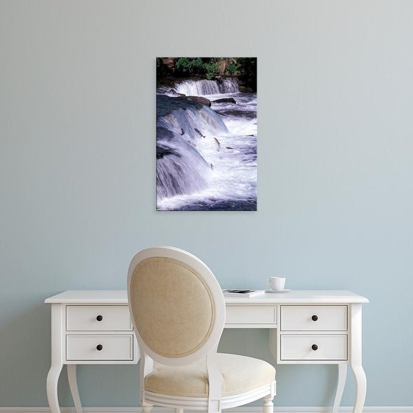 Easy Art Prints Gavriel Jecan's 'Salmon Leap Over Waterfalls' Premium Canvas Art