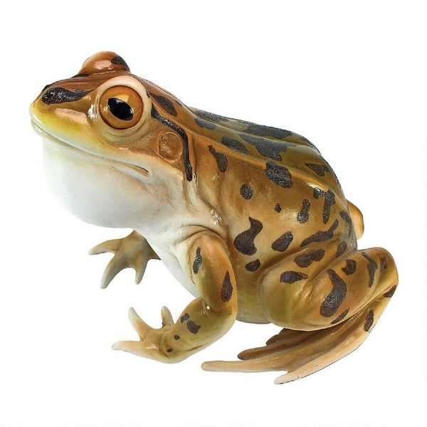"""10.5"""" Realistic Leopard Frog Hand Painted Outdoor Garden Statue - N/A"""