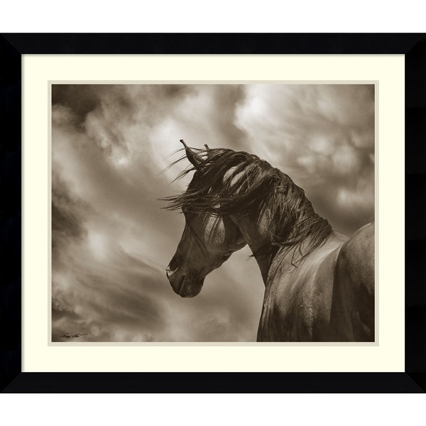Framed Art Print 'The Renegade Horse' by Barry Hart 33 x 28-inch. Opens flyout.