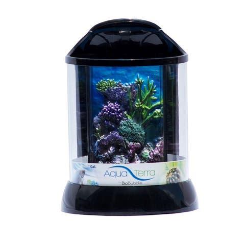 BioBubble 3D Coral Background for AquaTerra