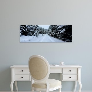 Easy Art Prints Panoramic Image 'Snow covered road in forest, Schwarzwalder Hochwald, Germany' Canvas Art