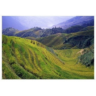 """Rice paddy terraces on rolling hills, Longsheng Area, China."" Poster Print"