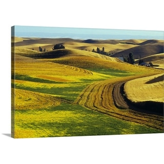 """Patterns in farm fields, rolling hills of Palouse region, Washington"" Canvas Wall Art"