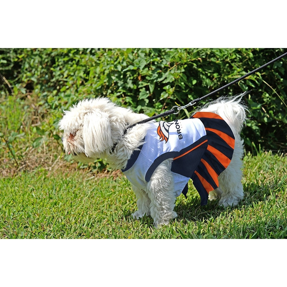 hot sale online 365ba 97a4e NFL Denver Broncos Cheerleader Dress For Dogs And Cats