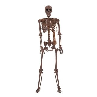 Lifesize Decayed Poseable Skeleton