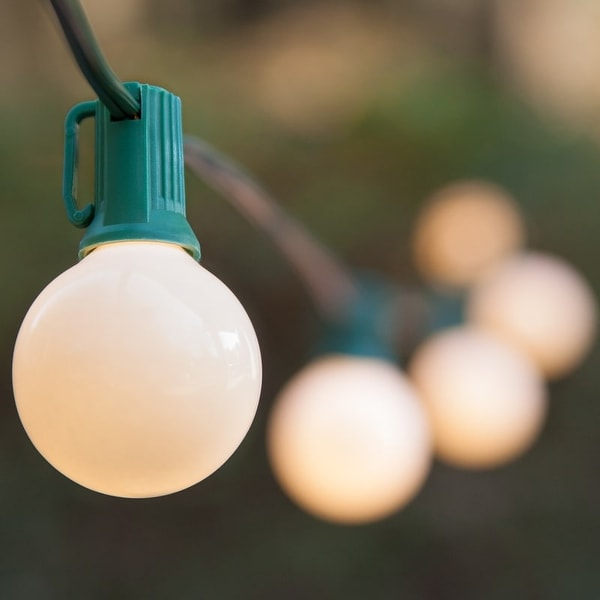 Wintergreen Lighting 70894 25 Bulb 25 Foot Long Incandescent Decorative Holiday String Lights with Green Wire
