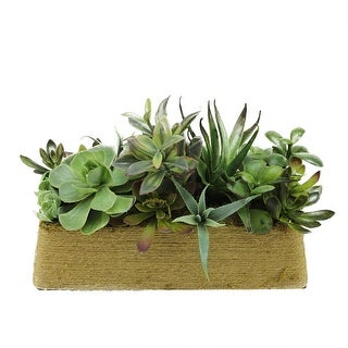 """12.5"""" Artificial Mixed Green and Red Succulent Plants in a Decorative Brown Rectangular Twine Pot"""