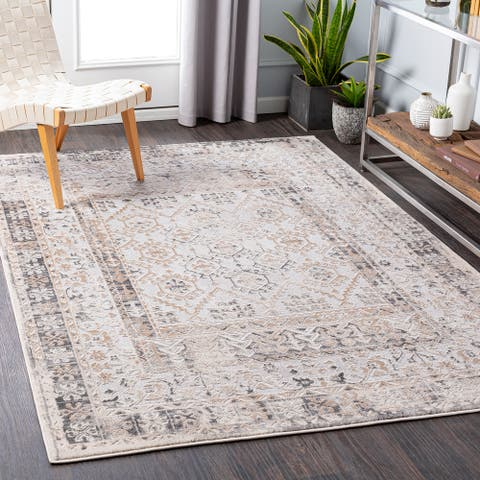 Roulo Distressed Traditional Area Rug
