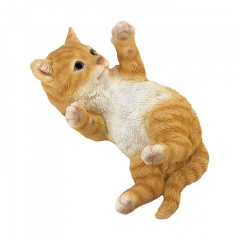 Orange Cat Lying On Its Back