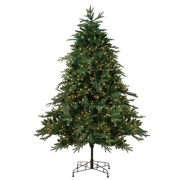 7.5' Pre-Lit Aurora Spruce Artificial Christmas Tree - Clear Lights - green