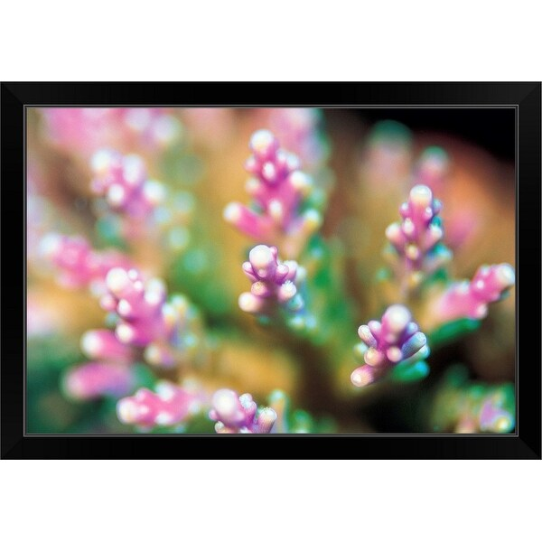 """""""Pink Flowers"""" Black Framed Print"""