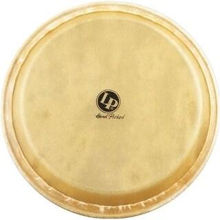 Latin Percussion LP274B Replacement Head 11.75 Conga
