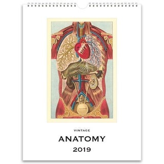 2019 Anatomy Nostalgic 2019 Poster Wall Calendar, More Science History by Found