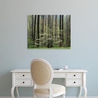 Easy Art Prints Adam Jones's 'Flowering Dogwood Tree' Premium Canvas Art