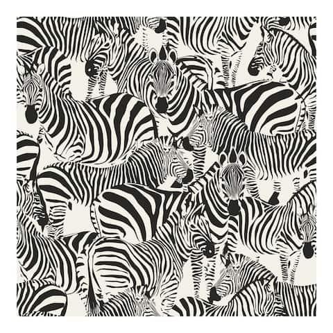 Jemima Black Zebra Wallpaper - 20.5 x 396 x 0.025