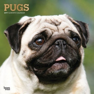 2019 Pugs Wall Calendar, Pug by BrownTrout