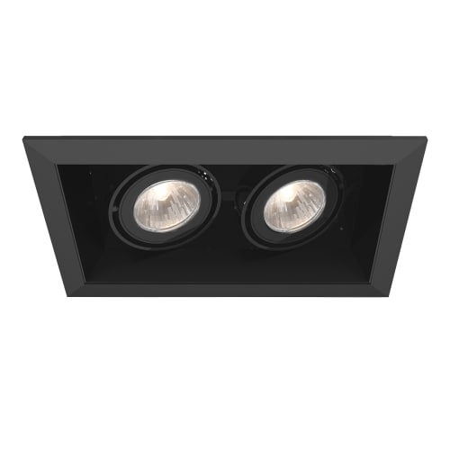 "Eurofase Lighting TE112TR 2 Light 11"" Rectangle Adjustable Recessed Light"