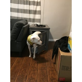 Shop Ecoflex Dog Crate End Table With Stainless Steel