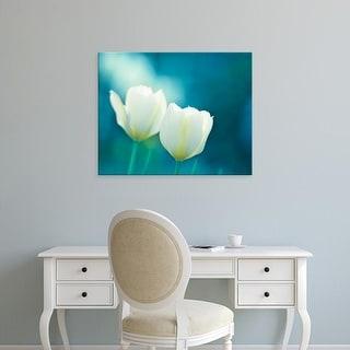 Easy Art Prints Carolyn Cochrane's 'Charisma' Premium Canvas Art