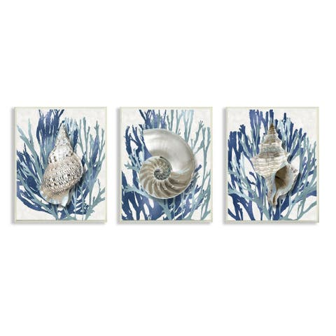 Stupell Industries Trio of Shell Coral Blue Beach Design,10 x 15, Wood Wall Art
