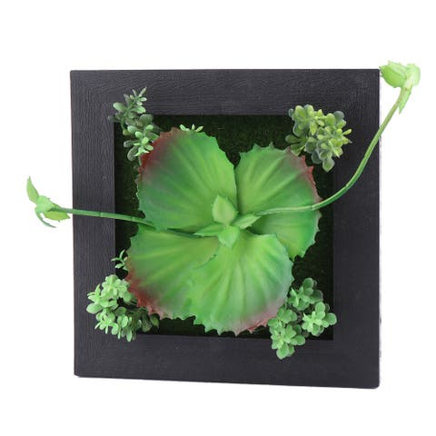 Home Plastic Wall Hanger Artificial Succulent Plant Decoration Frame Black Green - Plant E