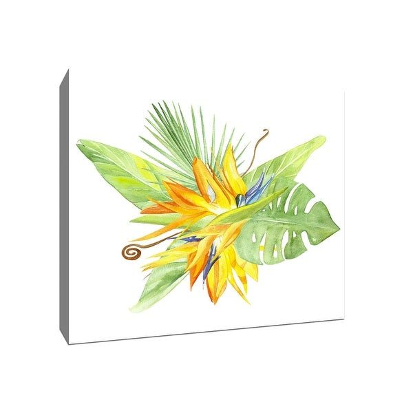 Birds of Paradise - Tropical Art - 20x20 Gallery Wrapped Canvas Wall Art