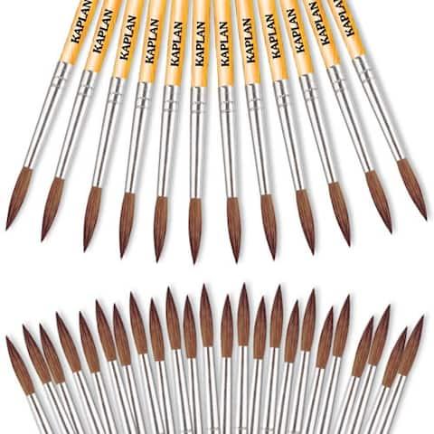 Watercolor Brush Set