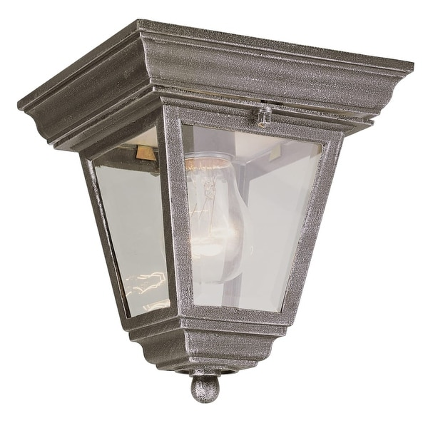 Trans Globe Lighting 4903 Singe Light Down Lighting Outdoor Flush Mount Cast Aluminum Ceiling Fixture from the Outdoor