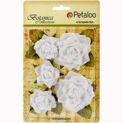 """White - Botanica Garden Roses 1.5"""" To 2.5"""" 5/Pkg"""