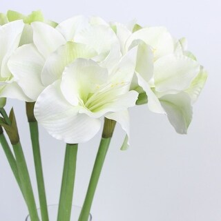 """G Home Collection Clivia Orchid Stem in White Green 30"""" Tall"""