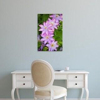 Easy Art Prints Adam Jones's 'Clematis Flower' Premium Canvas Art