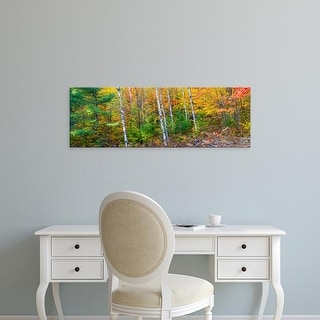 Easy Art Prints Panoramic Images's 'Autumn, Hiawatha National Forest, Alger Upper Peninsula, Michigan' Canvas Art