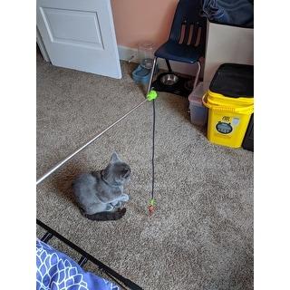 Jackson Galaxy Cat Ground Wand Toy