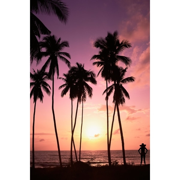 0a65bbcfa Shop Beach Scene - Palm Trees & Woman Silhouette at Sunset - Lantern Press  Photography (Art Print - Multiple Sizes Available) - Free Shipping On  Orders Over ...