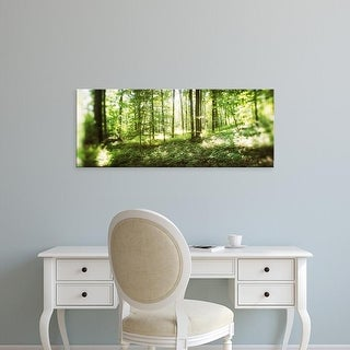 Easy Art Prints Panoramic Images's 'Trees in a forest, Hudson Valley, New Jersey, USA' Premium Canvas Art