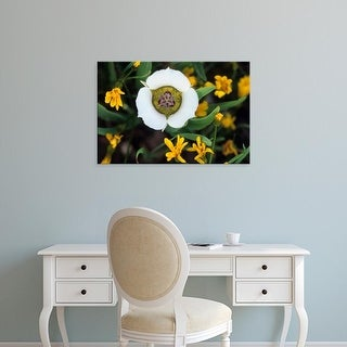 Easy Art Prints Jaynes Gallery's 'Mariposa Tulip' Premium Canvas Art