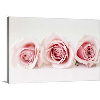 """Studio shot of pink roses"" Canvas Wall Art"