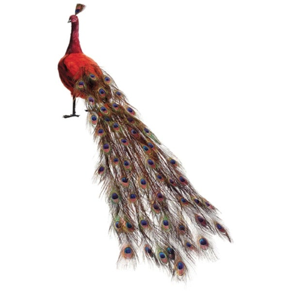 "60"" Life-Size Red Regal Peacock - Closed Tail Feathers Decoration"