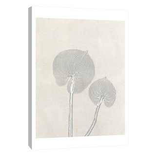 """PTM Images 9-105223  PTM Canvas Collection 10"""" x 8"""" - """"Gray Pair 2"""" Giclee Flowers Art Print on Canvas"""