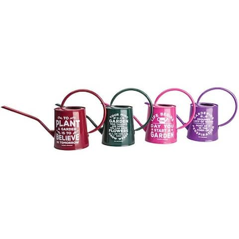 Panacea 84891 Watering Can, 3/4 Gallon Capacity, Assorted Styles