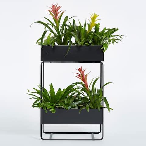 Vernita Indoor Outdoor Planter and Storage Case