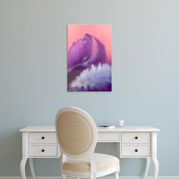 Easy Art Prints Jaynes Gallery's 'Iris Petal Close