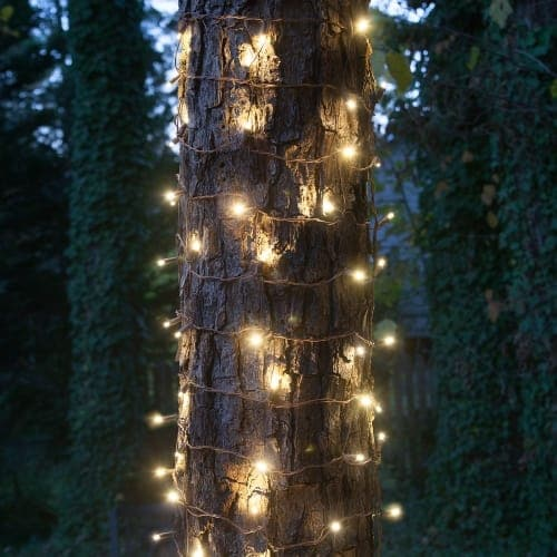 Wintergreen Lighting 72528 100 Bulb 2Ft x 6Ft LED Decorative Holiday Net Lights with Brown Wire