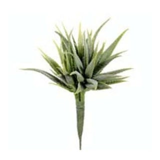CK3020-GR 8 in. Mini Aloe Pick Green- Case of 12