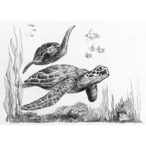 "Sketching Made Easy Kit 5'x7""-Sea Turtles"