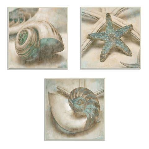 Stupell Industries Star Fish and Sea Shells Distressed Texture Blue Tan Design,12 x 12, Wood Wall Art