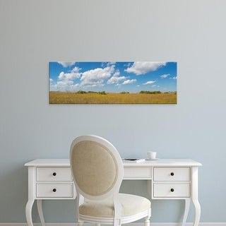 Easy Art Prints Panoramic Images's 'Clouds over Everglades National Park, Florida, USA' Premium Canvas Art