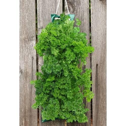 herb vertical garden Shop Herb Garden With Vertical Growing Bag Grow Basil