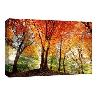 """PTM Images 9-148153  PTM Canvas Collection 8"""" x 10"""" - """"Prism of Light"""" Giclee Forests Art Print on Canvas"""