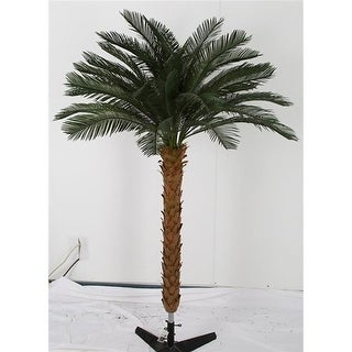 Autograph Foliages A-174700 7.5 ft. Cycas Palm Tree by 4 Green